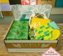 Luxily Boutique Box Review