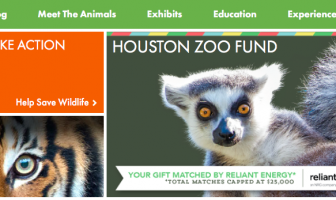 Tips and Tricks on Visiting the Houston Zoo