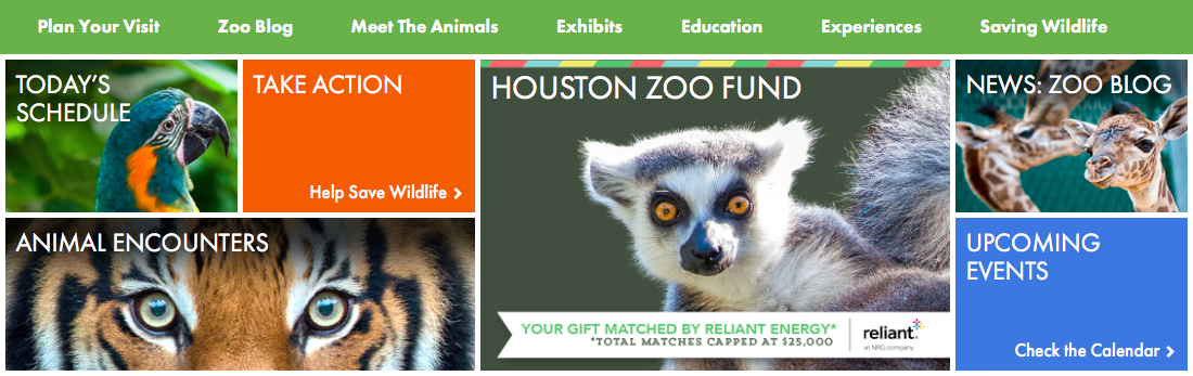 When to go to the Houston Zoo