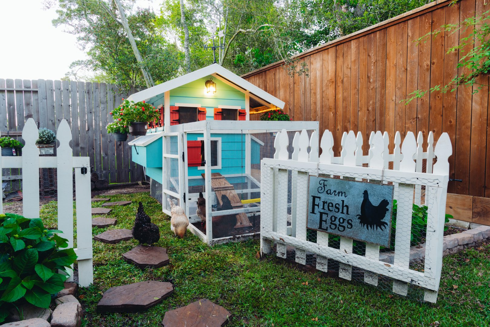 Best Backyard Chicken Coop – The Chick Mansion