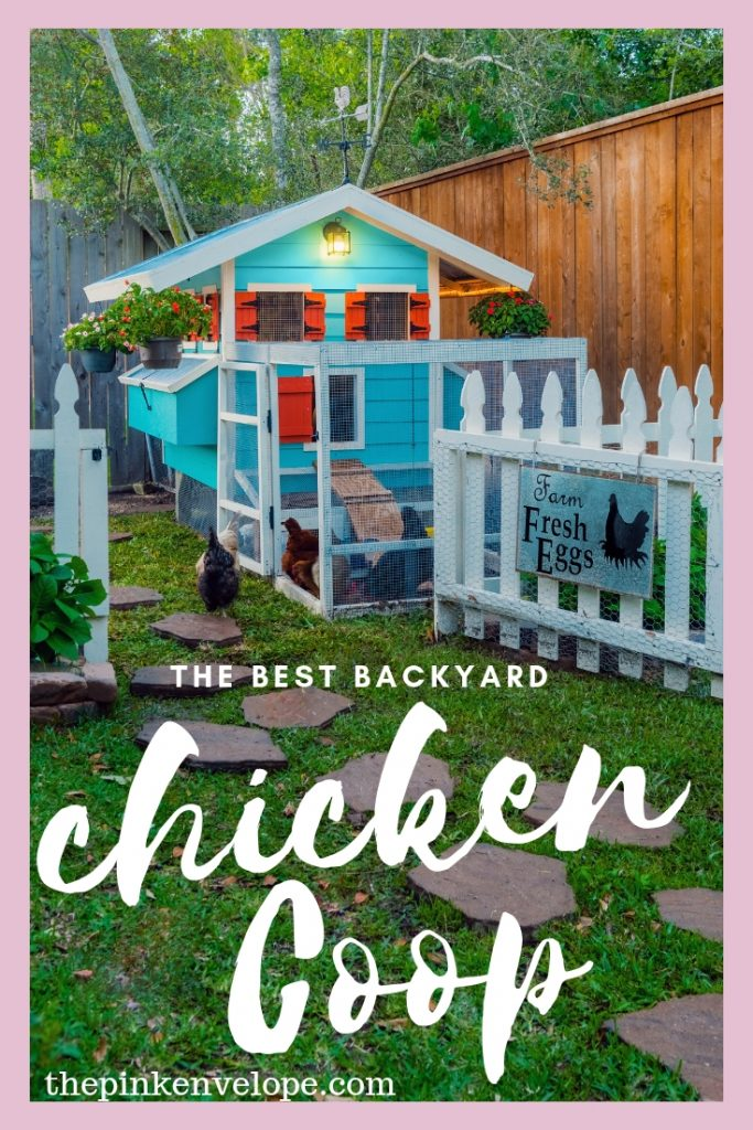 The Best Backyard Chicken Coop Design